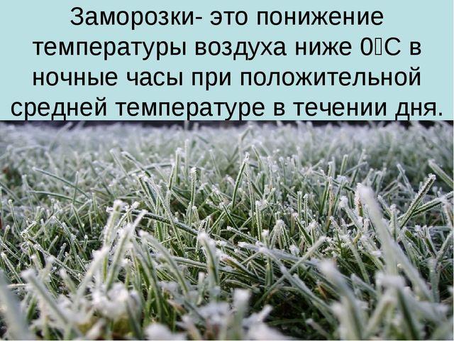 Заморозки- это понижение температуры воздуха ниже 0⁰С в ночные часы при полож...