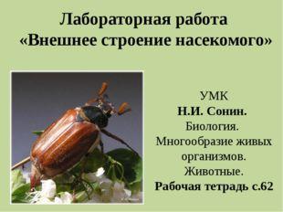 Лабораторная работа «Внешнее строение насекомого» УМК Н.И. Сонин. Биология. М