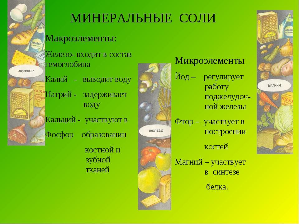 МИНЕРАЛЬНЫЕ СОЛИ Макроэлементы: Железо- входит в состав гемоглобина Калий - в...