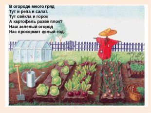 В огороде много гряд Тут и репа и салат. Тут свёкла и горох А картофель разв