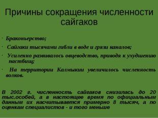 Причины сокращения численности сайгаков Браконьерство; Сайгаки тысячами гибли
