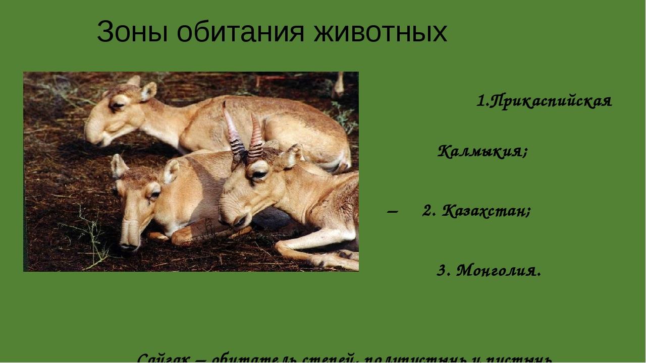 Зоны обитания животных 1.Прикаспийская низменность – Калмыкия; – 2. Казахстан...