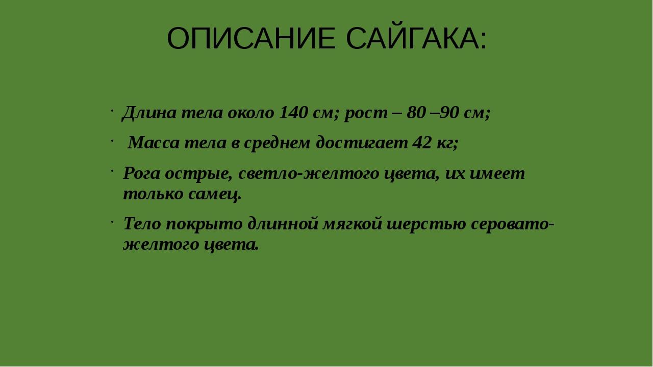ОПИСАНИЕ САЙГАКА: Длина тела около 140 см; рост – 80 –90 см; Масса тела в ср...