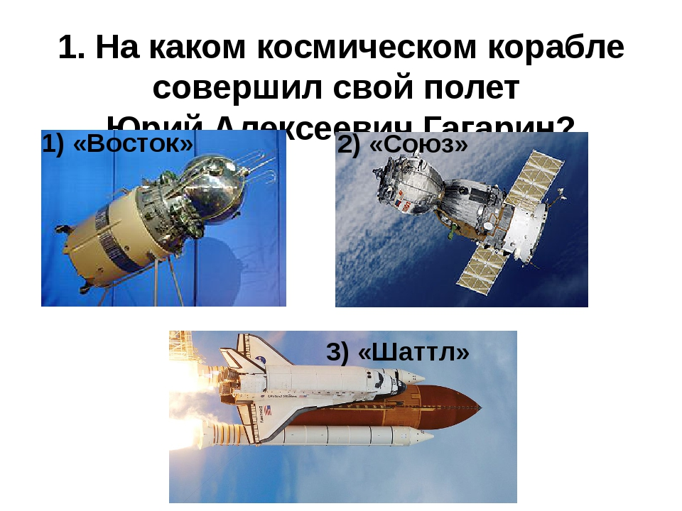 3. Кто из этих птиц летал в космос? 3) Перепел 1) Попугай 2) Индюк