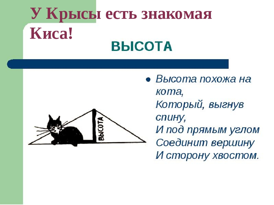 У Крысы есть знакомая Киса!