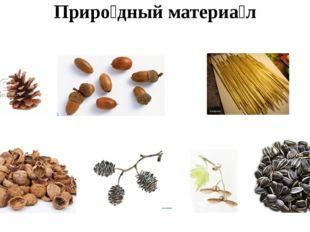 Приро́дный материа́л ши́шки жёлуди соло́мка оре́хи плоды́ ольхи крыла́тки се́