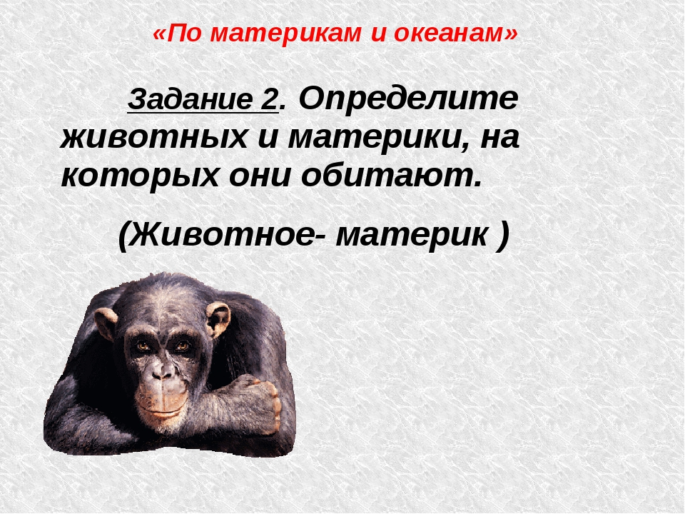 Задание 2. Определите животных и материки, на которых они обитают. (Животное...
