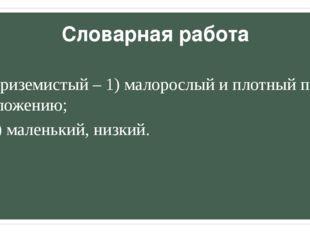 Словарная работа Приземистый – 1) малорослый и плотный по сложению; 2) малень