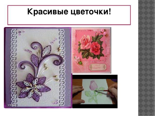 Красивые цветочки!
