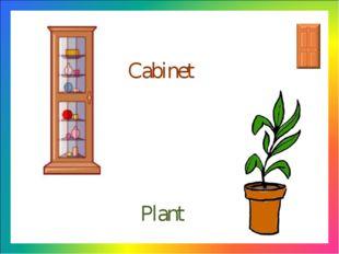 Cabinet Plant