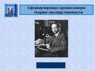 Сформулировалхромосомную теорию наследственности Томас Морган Автор: Руссков