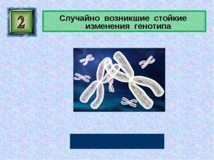 Случайно возникшие стойкие изменения генотипа Мутации Автор: Русскова Ю.Б.