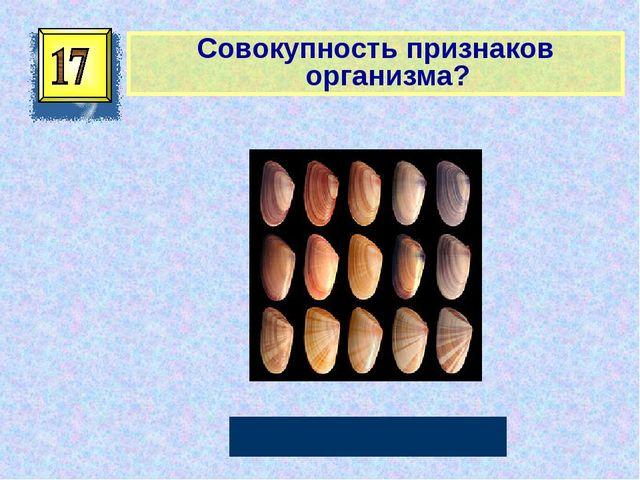 Совокупность признаков организма? Фенотип Автор: Русскова Ю.Б.