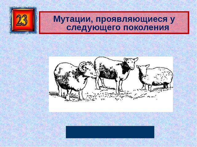 Мутации, проявляющиеся у следующего поколения Генеративные Автор: Русскова Ю...