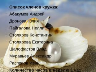 Список членов кружка: Абакумов Андрей Дронова Юлия Пайгалова Нелли Столяров К
