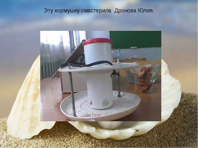 Эту кормушку смастерила Дронова Юлия.