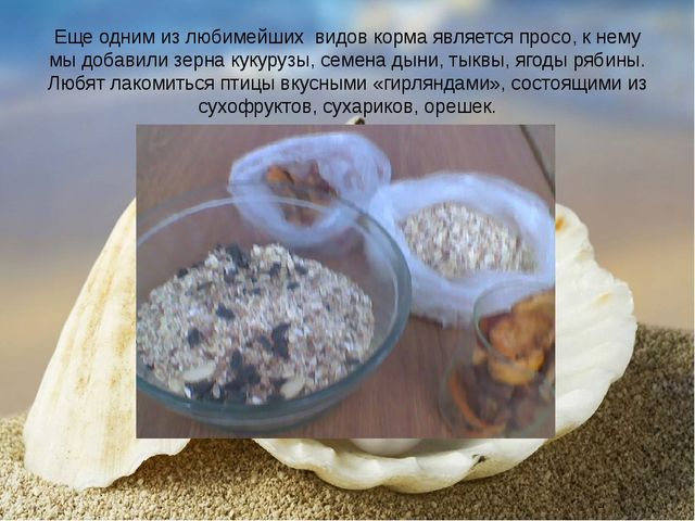Еще одним из любимейших видов корма является просо, к нему мы добавили зерна...