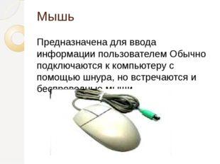 Мышь Предназначена для ввода информации пользователем Обычно подключаются к к