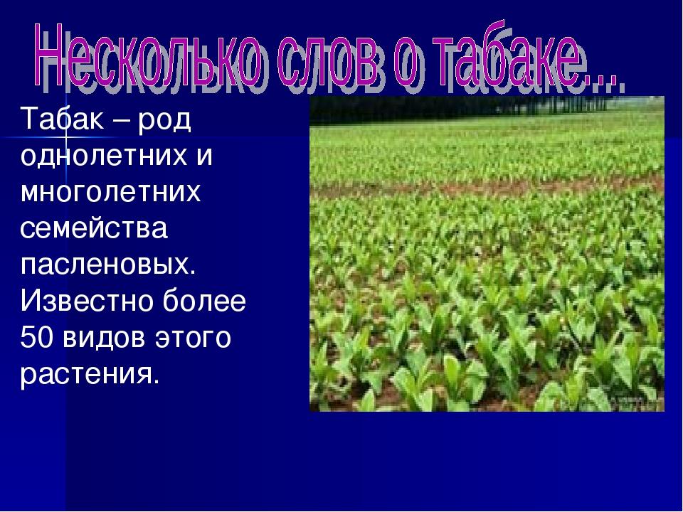 Табак – род однолетних и многолетних семейства пасленовых. Известно более 50...