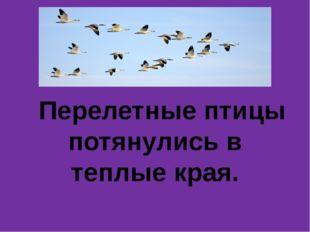 Перелетные птицы потянулись в теплые края.