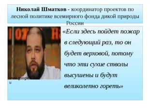 Николай Шматков - координатор проектов по лесной политике всемирного фонда ди