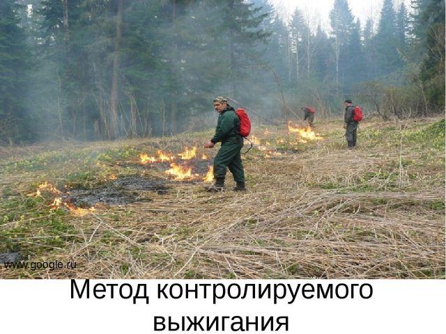 Метод контролируемого выжигания www.google.ru