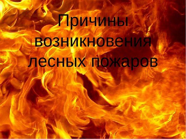 Причины возникновения лесных пожаров