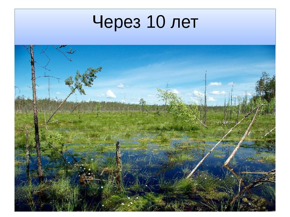 Через 10 лет www.google.ru