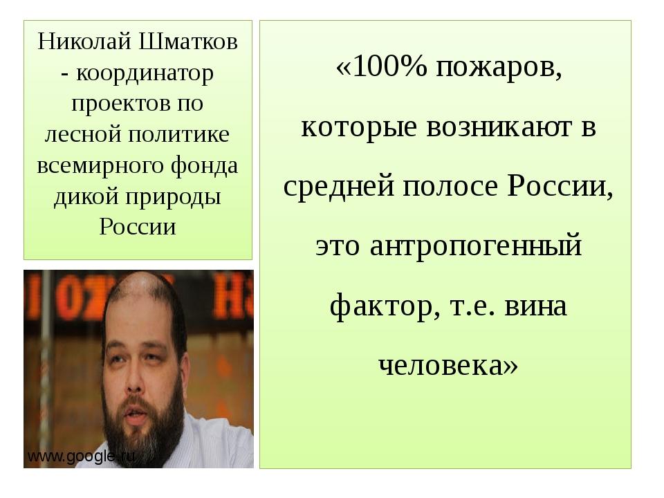 Николай Шматков - координатор проектов по лесной политике всемирного фонда ди...