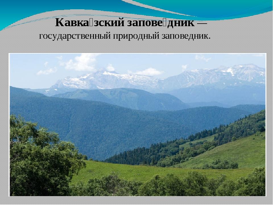 Кавка́зский запове́дник — государственный природный заповедник.