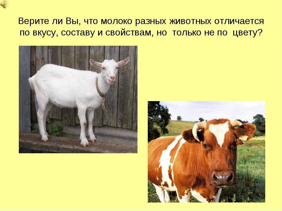 Верите ли Вы, что молоко разных животных отличается по вкусу, составу и свойс...