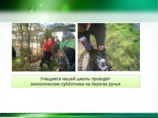 Учащиеся нашей школы проводят экологические субботники на берегах ручья. http