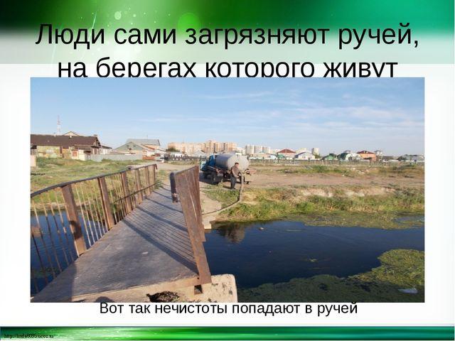 Люди сами загрязняют ручей, на берегах которого живут Вот так нечистоты попад...