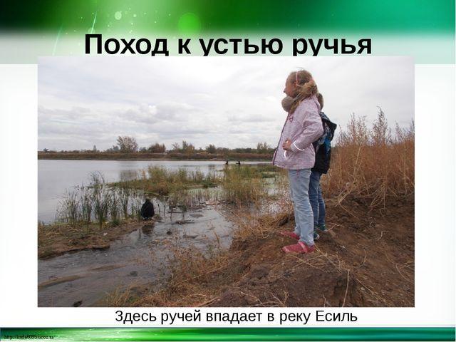 Поход к устью ручья Здесь ручей впадает в реку Есиль http://linda6035.ucoz.ru/