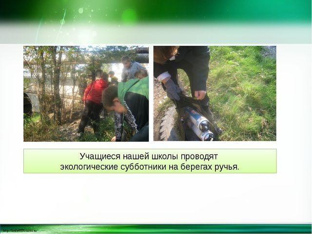 Учащиеся нашей школы проводят экологические субботники на берегах ручья. http...