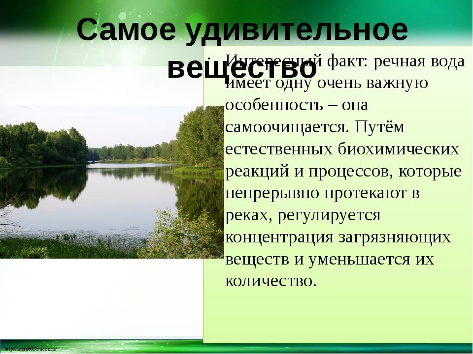 Интересный факт: речная вода имеет одну очень важную особенность – она самооч...