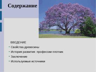 Содержание ВВЕДЕНИЕ Свойства древесины История развития профессии плотник Зак