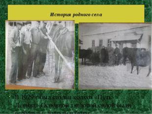 В 1929 г был создан колхоз «Путь Ленина».Основной тягловой силой были верблюд