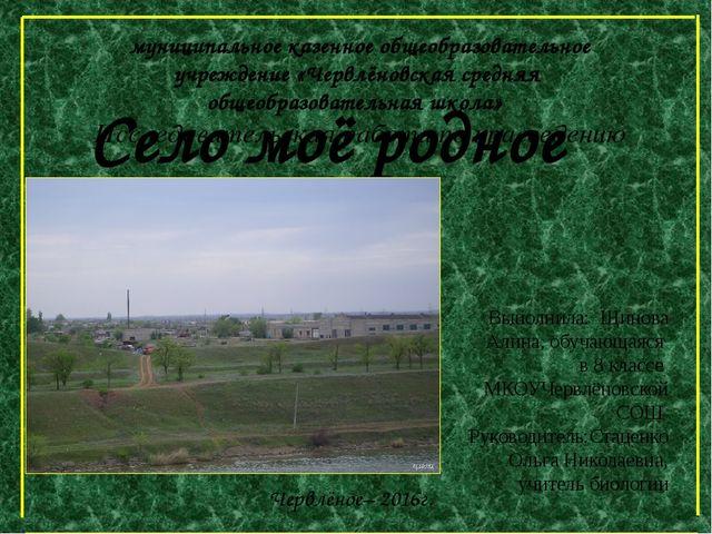 Село моё родное Выполнила: Щинова Алина, обучающаяся в 8 классе МКОУЧервлёнов...