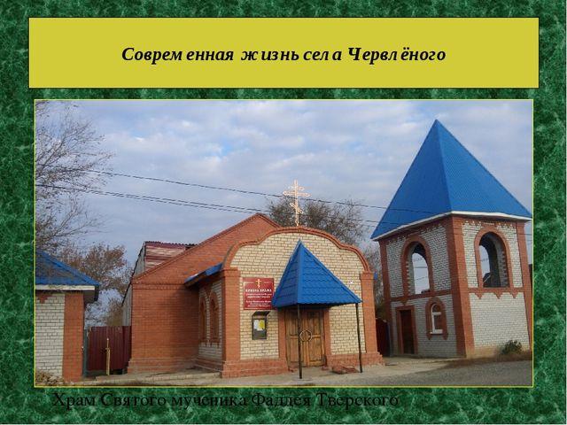 Современная жизнь села Червлёного Храм Святого мученика Фаддея Тверского