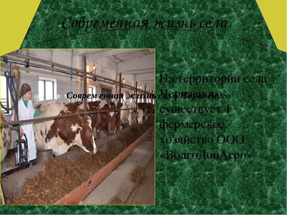 Современная жизнь села На территории села Червленого существует 1 фермерское...
