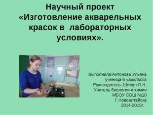 Научный проект «Изготовление акварельных красок в лабораторных условиях». Вып