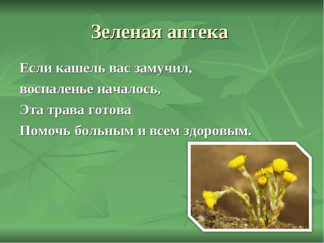 Зеленая аптека Если кашель вас замучил, воспаленье началось, Эта трава готова...