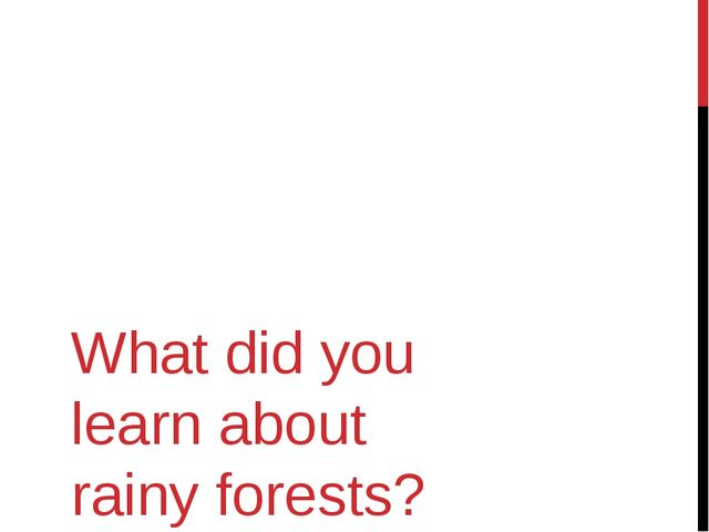What did you learn about rainy forests?