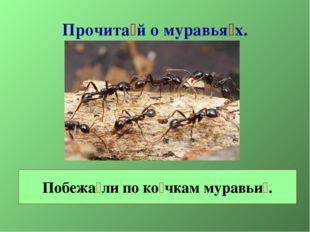 Прочита́й о муравья́х. Побежа́ли по ко́чкам муравьи́.