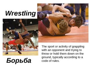 Wrestling Борьба The sport or activity of grappling with an opponent and tryi