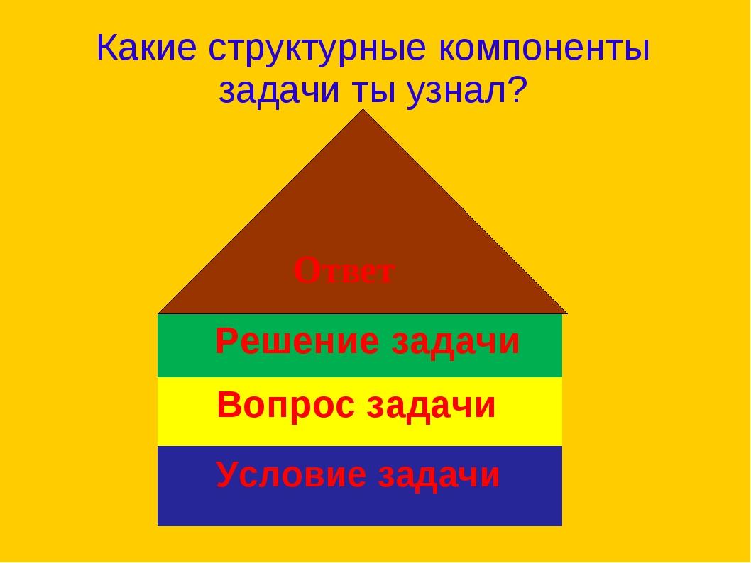 Какие структурные компоненты задачи ты узнал? Условие задачи Вопрос задачи Р...