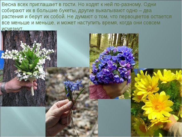 Весна всех приглашает в гости. Но ходят к ней по-разному. Одни собирают их в...