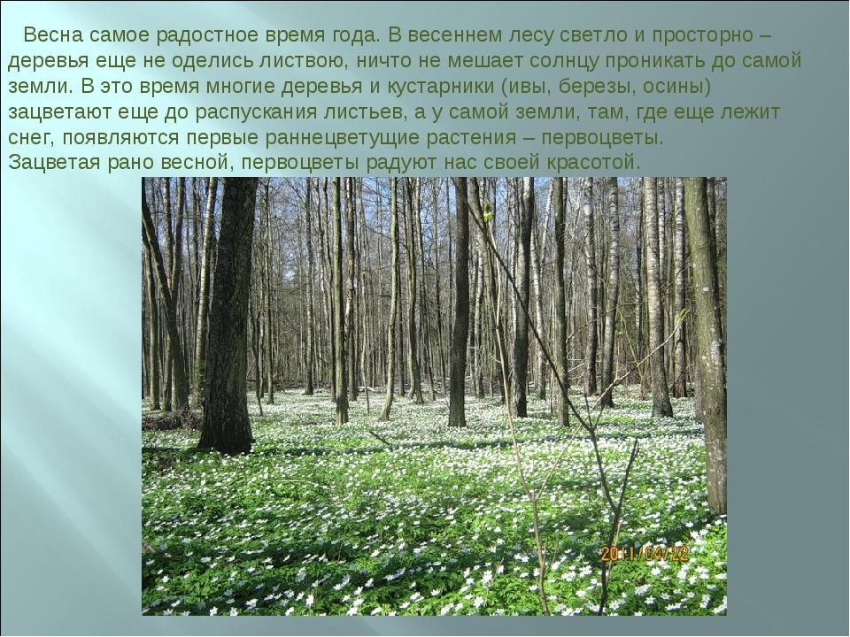 Весна самое радостное время года. В весеннем лесу светло и просторно – дерев...