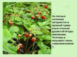На лесных полянках загораются в зеленой траве алые огоньки душистой ягоды зем